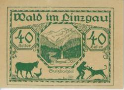 Imaginea #1 a 40 Heller 1921 - Wald im Pinzgau