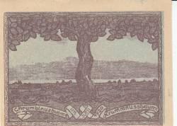 Image #2 of 10 Heller 1920 - Krummnußbaum