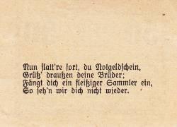 Image #2 of 50 Heller 1920 - Kirchheim