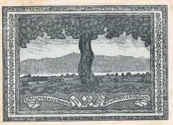 50 Heller 1920 - Krummnußbaum