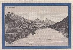 Imaginea #2 a 99 Heller 1919 - Fieberbrunn