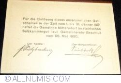 Image #2 of 20 Heller 1920 - Mitterndorf